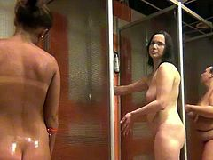 Real voyeur shower cabin hidden shoot with many different naked girls and woman, young and old, naked body parts and full nude video.