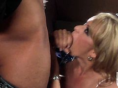 Stormy Daniels does oral job for hard cocked guy to enjoy