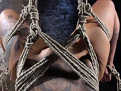 Kleio is into being tied up and tortured, pleasured, or pleasurably tortured even. The inked lovely is buzzed by a vibrator, before being tied upside-down with her legs behind her, her arms secured to length of wood. Her gag is removed, allowing her to fully voice her pleasure at his playful fingers.