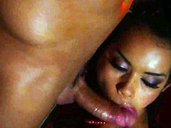 Daisy Marie just loves to blow and cant say No to her hard cocked fuck buddy