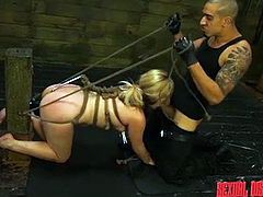 Lily is bound up all the way, with a harness to pull on, which her executor utilizes whenever he wants her to move. On all fours, she sucks his cock and takes a pounding from behind. Before he begins thrusting deep inside her, he adds clothespins to her nipples for more pain and domination.