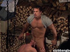 lumberjack gays sucking dicks in the woodshed