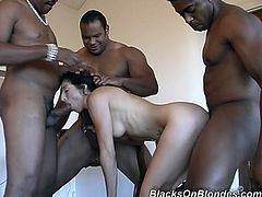 Curious slutty brunette with rounded ass is hammered by black hunks