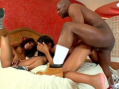 This threesome produced by West Coast Productions puts together the best Ebony and Black Pornstars. Rihanna Rimes is hot as fuck and Misty Stone is horny as fuck and we all know what Prince Yahshua is capable of.