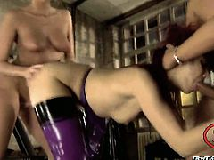 Exotic Katsuni is horny as hell and sucks Rocco Siffredis rock hard rod with wild enthusiasm after bum fucking