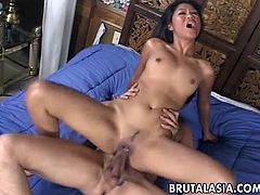 One attractive Thai/Asian slut who has a very beautiful face also has a cock to melt off. She is working on it but at one point she realizes she needs to give up her ass.