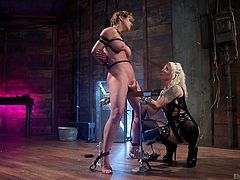 When it comes to lesbian domination, few are seen as often at the helm than Lorelei. She's great at it, which is why. She gets all in Darling's snatch with her fingers, electric wand, vibrators and even other electric toys.