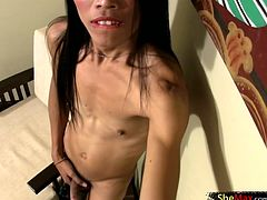 Noi demonstrates her skills as a dick eater before stripping nude. Ladyboy worshippers will get weak knees and hard cocks as she tickles her hard dick until it shoots and exquisite load of jizz...