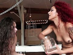 Ziggy Star and lesbian Daisy Ducati have sex on camera for you to watch and enjoy