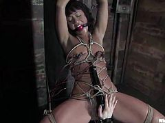Lesbie female domination round dildoing And Torture For Jandi Lin