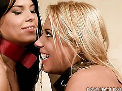 Blonde Amabella is a blowjob addict who loves guys sturdy meat stick