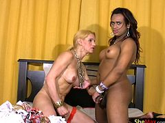 It is a sexy shemale twosome when Myrla and Adryella get together and play. One brunette with dark skin and the other blonde with ivory skin, these two really complement each other and look like...