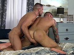 Deep inside their cracks these studly gay hunks will find blissful pleasure. The muscle gay men spread ass cheeks and have fun. One beefcake likes his lover's tight butthole and prepares to stuff his meaty cock in his tight anus.