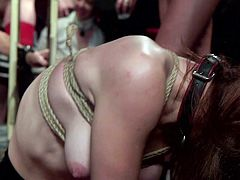 Unsatisfied with regular fucking, these busty babes wanted to try BDSM. Their masters knew that they love to get humiliated in public and arranged a fucking session in front of strangers. Spanking, rope bondage, electric shocks, breath play and much more in a single video and don't miss it!!!