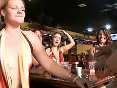Nymphs wiping out pork dagger At Stripper's Club.