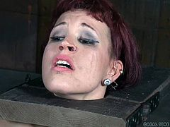 Bounded redhead babe is placed in a wooden device and brutally fucked with a strapon, by her busty blonde mistress. This tired tattooed slave cried loud, but nobody heard her screams in this dark dungeon. With every thrust, her lesbian master penetrates her tigh wet pussy deeper and soon, she... Enjoy lesbian bdsm action!