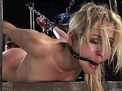Goldie Rush has a painful day yesterday. Somebody removed her clothes and tied her. He put ball gag in her mouth, so that she couldn't scream, when he put fingers in her holes. He pressed her boobs very hard and fucked her ass hole in brutal manner. You can see her being punished.