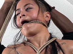 Although Jack is in his element in the dungeon, Chillycarlita wanted something a little more normal. Jack adapts, using ropes and vibrator to tie her up, tease her and even hang her in midair. Her pussy drips with excitement.