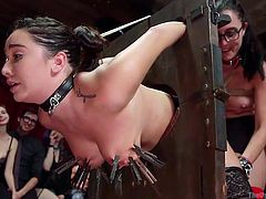 Mickey is getting licked and sucked by two filthy whores on The Upper Floor, where anything goes, and it goes down in a very stylish, sophisticated atmosphere. Watch all of the ropes, stocks, blowjobs, pussy licking and hardcore action right here!