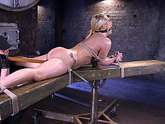 This hot blonde bitch has to be punished for being so slutty! Besides a kinky rope bondage, the dominant executor has in store dildos and many other things to arouse the naked helpless babe. See her wearing a ball gag, while a big dildo is stuffed in her crazy ass... Enjoy.