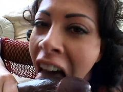 Latina brunette with big tits yelling while her anal is throbbed hardcore
