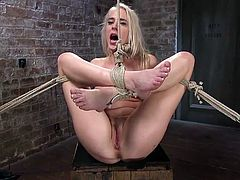Slutty Cadence finds herself prisoner of a dominant guy. The man has bonded her with strong ropes and the bitch's body becomes the main attraction, as he's got full access to use her, as he wants. Slapping tits and feet are part of his kinky game, making the blonde babe scream of pleasure.