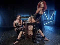 We dragged Eliza in my garage, where we humiliated her, by putting her in a special bondage device, without possibility to move. She licked our asses, then we stimulated her nipples with electric wand and clinched them. Bella inserted electric wand in her ass and a dildo in her pussy...
