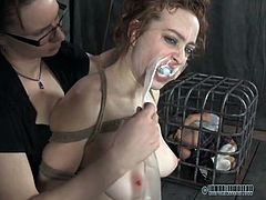Busty shaved girl gagged and bound