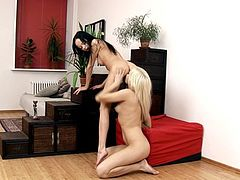 Raven haired teen and blondetake turns in licking pussy