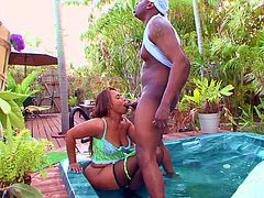 Black chick Blaze spreads her legs for a massive cock