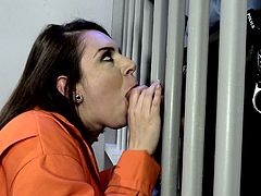 Wild and arousing prison sex with Tori Avano and Tommy Gunn