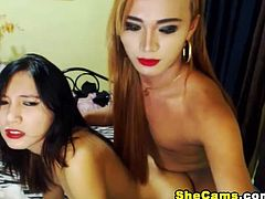 This trio horny and sexy trannies suck and fuck each other on live free webcam show.These shemale trio is extremely hot. With superb beauty and sexiness and graceful slutiness equipped with their gigantic stallion cock they indeed can have one hell of a good show. They are so good in teasing and they make you truly hot. Kissing caressing and making each other's cock cum with pleasure. A shemale trio with ass digging cock, Ass fucking so hard that make them moan for more.
