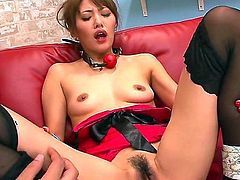 Japanese submissive girl Mei Aso with natural boobs parts her legs and gets her dripping wet hairy pussy attacked by vibrator. She bends over and gets her asshole tongue fucked after playing with toy.