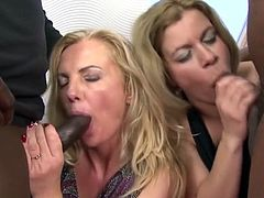 Interracial European Milf Orgy