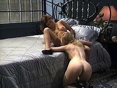 Christy Canyon spreads her legs for a pussy craving babe