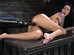 Gorgeous brunette pornstar with a perfect body enjoys being brutally fucked by a fucking machine. Amazing busty babe, Lily Lane, adores having her pussy drilled by a hard dildo and... join and have fun!