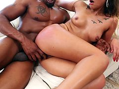 Here we present you only the biggest black cocks and only the most beautiful and horny babes, ready to get their tight pussies brutally stretched. This isn't a love story, it's the hottest interracial porn online. Join the movement today!