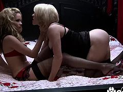 Big tits blonde Krissy Lynn And Prinzzess pussy dildoing and banging with strapon