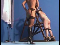 http://img4.sexcdn.net/0q/ew/zh_female_domination.jpg