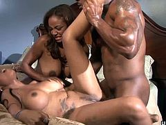 Having these black babes hang on your cock is what so many would love to have. They have big boobs, tight asses and pussies that are slick and wet, going at the dude in this threesome.
