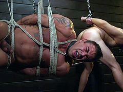 This time Sebastian Keys will dominate Mason Lear and Draven Navarro. Hot sex slaves will be brutally tortured and used. Kinky rope bondage, ass whipping, handjobs and much more! Join and have fun! Amazing gay threesome with rough bdsm!